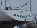 Pegasus 0